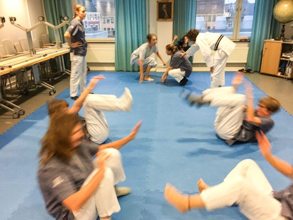 Fallprojektet Judo4Balance stärks upp med ytterligare resurser inför 2019