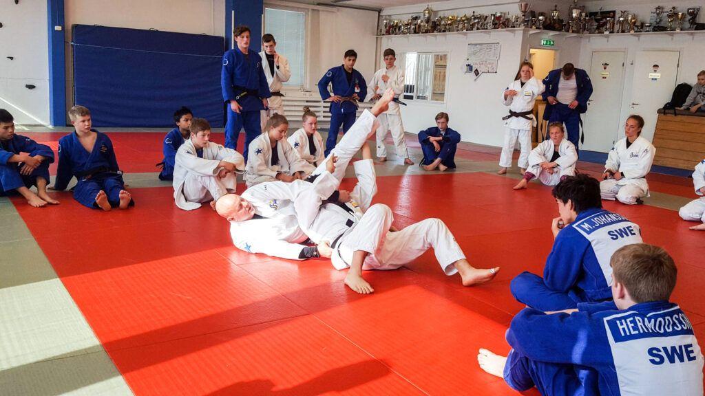 Judo skapar vinnare-lägret 26-28 april
