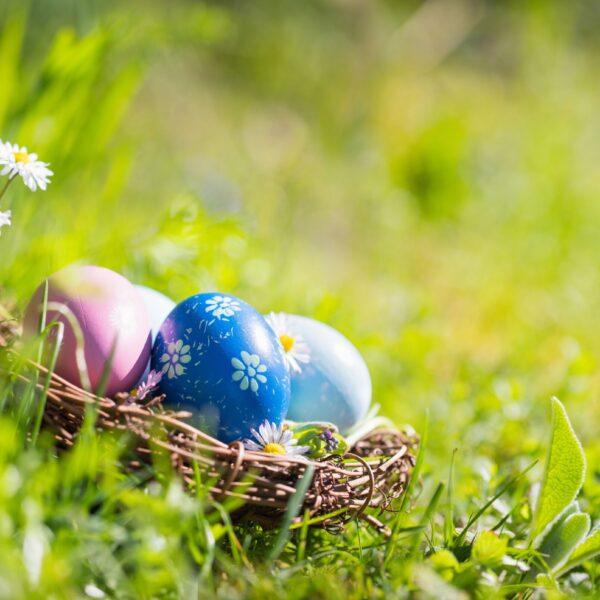 Målade ägg i en korg i gräset.